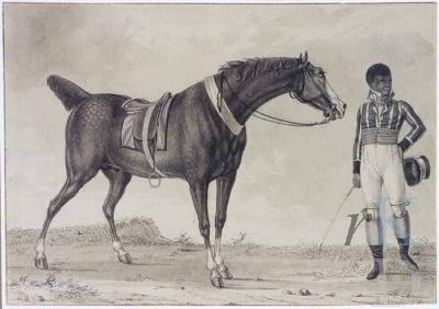 Reinier Vinkeles man en paard Christies Amsterdam