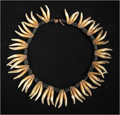Dog teeth necklace