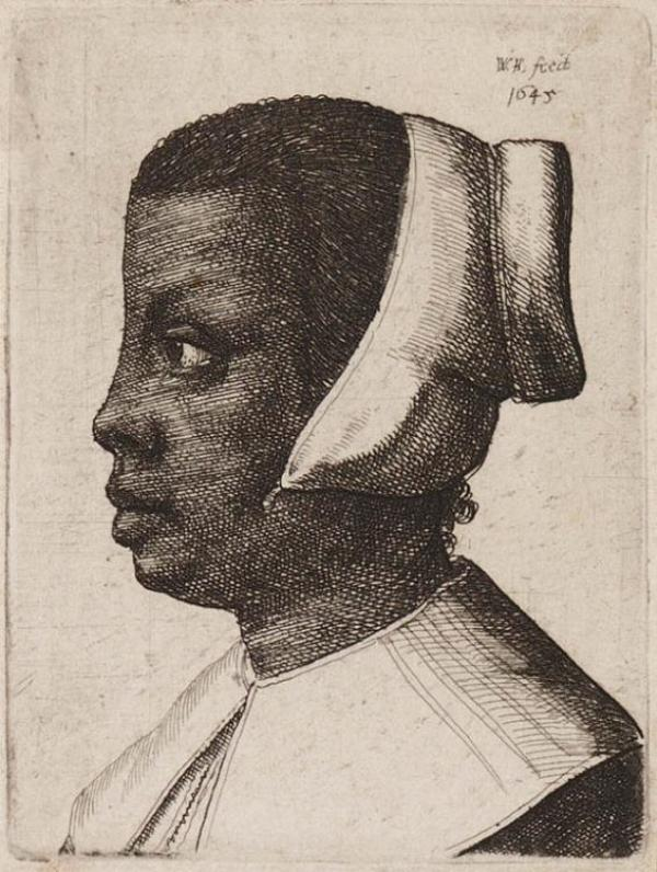 Hollar 1646 Teylers