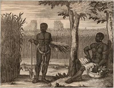 J. D. Herlein, Beschryvinge van de volk-plantinge Zuriname Leeuwarden, 1718