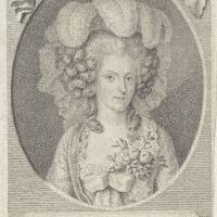Met flambouwen pruiken in brand steken op de verjaardag van Willem I in 1785