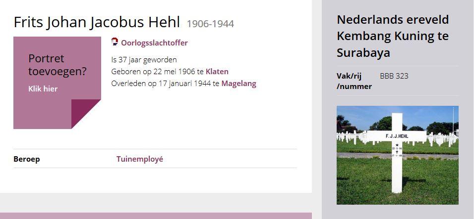 Frits Johan Jacobus Hehl